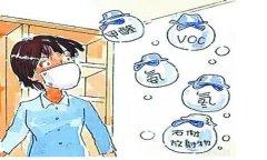 TCL空气净化器盘点民间除甲醛方法