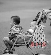 """广州""""单独两孩""""出生人口不及全市户籍出生人"""