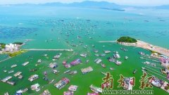 第十七届南海(阳江)开渔节成功举办